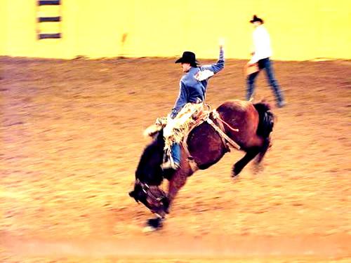gaucho-texanos-na-cultura-materia-000747 04785693d97