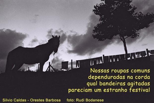RUDI poema&foto22